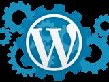 wordpress-marketing-sito-web-promozione-seo-bergamo[1]